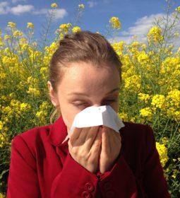 allergie di stagione - impresa-news di aprile
